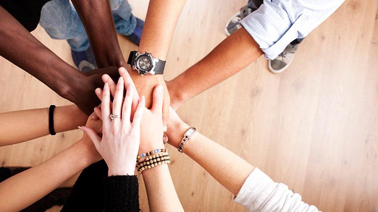 Curso Online de Trabajo en equipo
