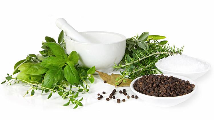 beneficios-plantas-medicinales
