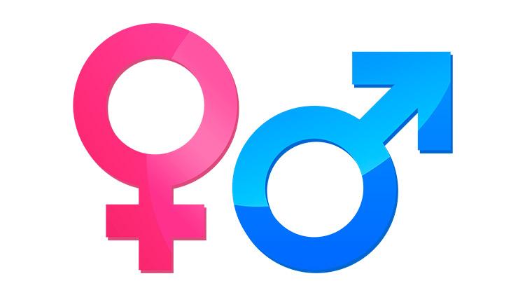 Curso Online de Sexología para Asesoras Tuppersex