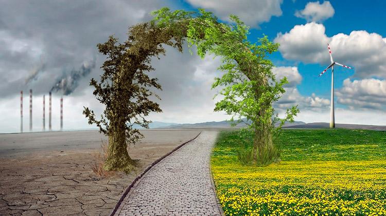 Cambio Climático Y Desarrollo Sostenible   Cambio Climático Y Desarrollo Sostenible cambio climatico desarrollo sostenible