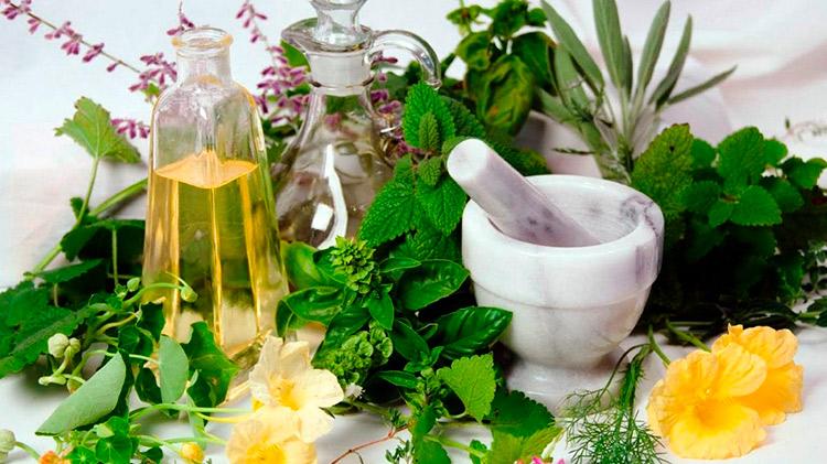 cosmética natural Cosmética Natural cosmetica natural