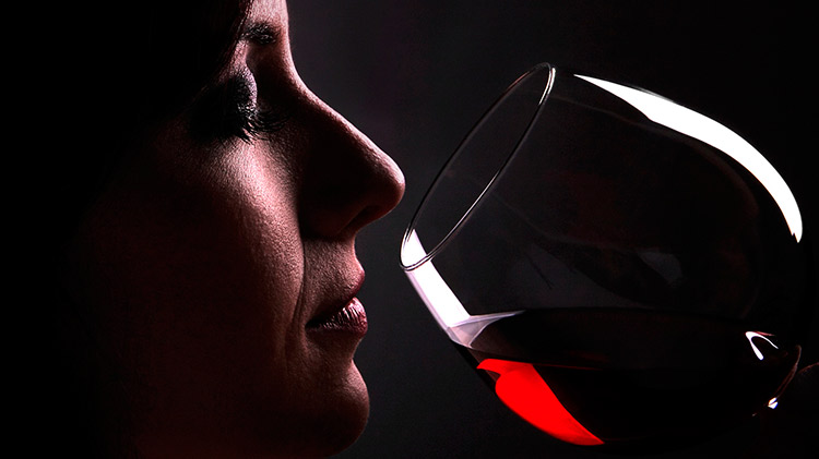 bonuscursos.com BonusCursos.com iniciacion cata vinos