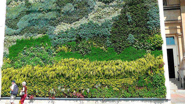 curso online de jardiner a vertical