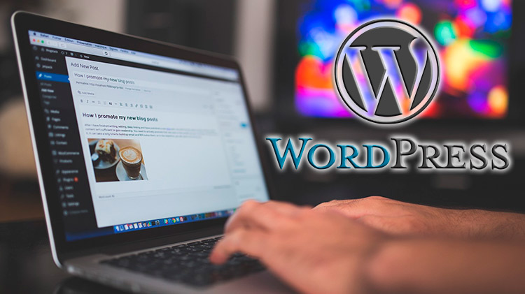 WordPress Avanzado  wordpress avanzado WordPress Avanzado wordpress superior