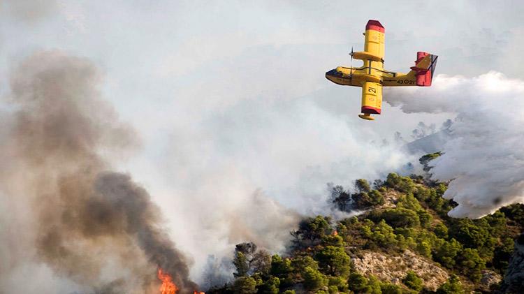 BonusCursos.com  bonuscursos.com BonusCursos.com extincion incendios forestales 1