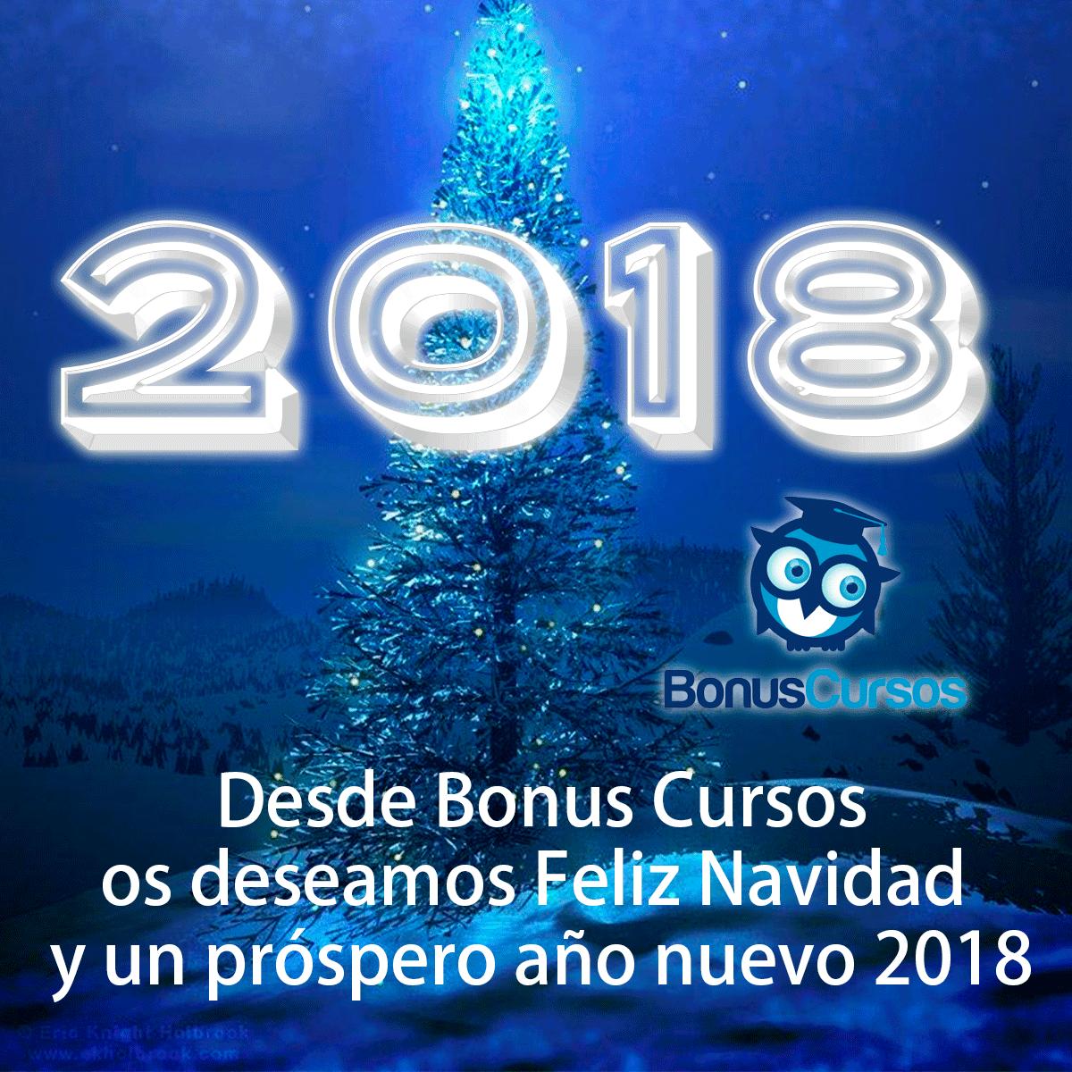 Feliz Navidad 2017   Feliz Navidad 2017 feliz navidad bonus cursos 2017