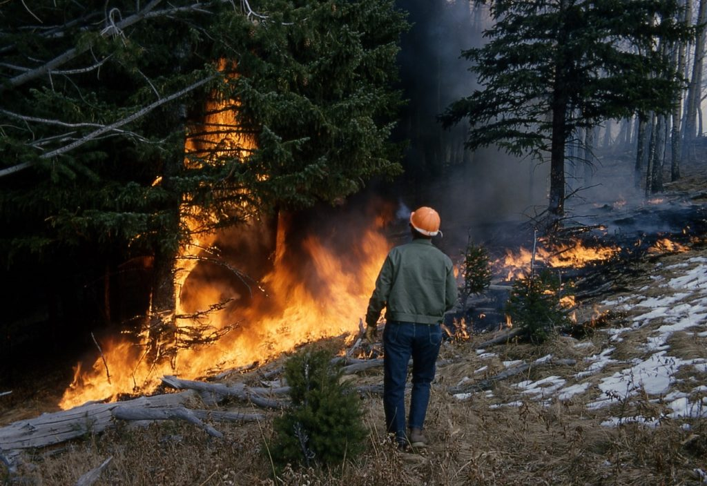 Extinción de incendios forestales