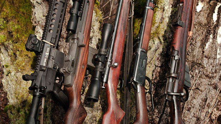 armas de fuego: desde la antigüedad hasta la actualidad Armas de Fuego: Desde la Antigüedad hasta la Actualidad armas fuego