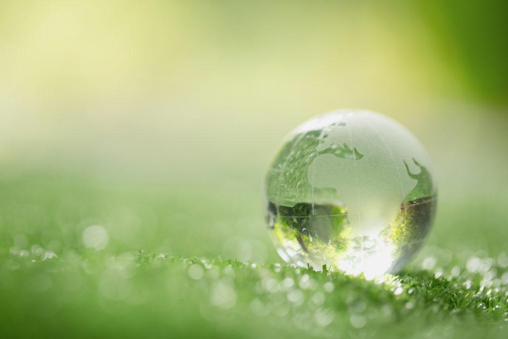 Los mejores cursos de calidad y medio ambiente