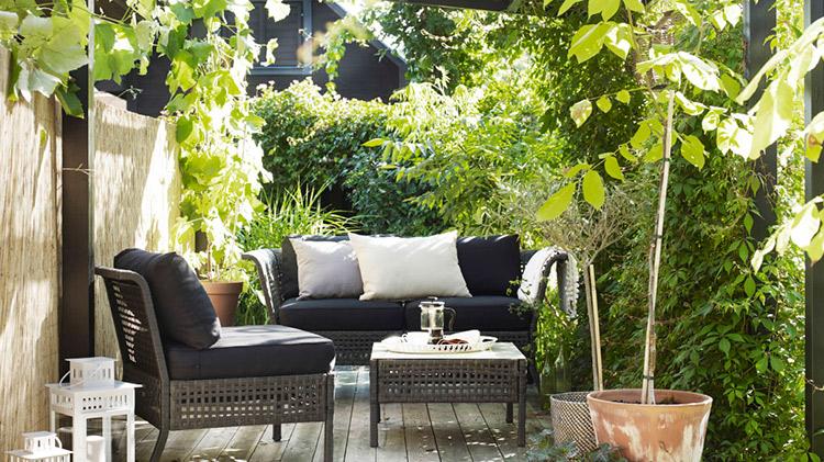 Jardinería de Interior  jardinería de interior Jardinería de Interior jardineria interior